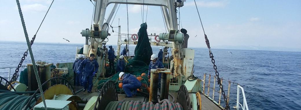 沖合底曳網漁業