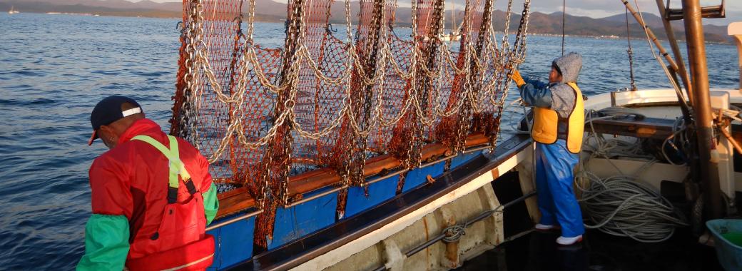 けた網漁業